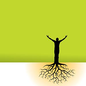 300px bigstock-Tree-Man-Roots-3256040